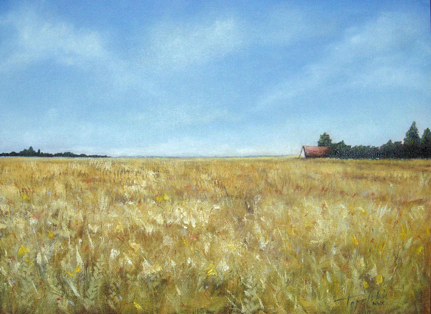 fields of gold oil painting fine arts gallery original fine